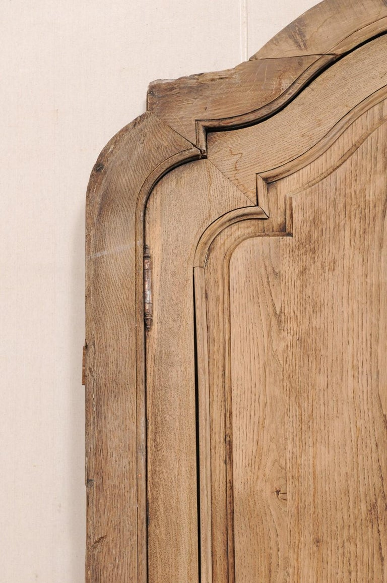 Exquisite Pair of Arched 19th Century Spanish Carved Wood Doors with Casing In Good Condition For Sale In Atlanta, GA