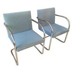 Extensive Collection of 48 Mies Brno Style Tubular Armchairs. Office/Restaurant.