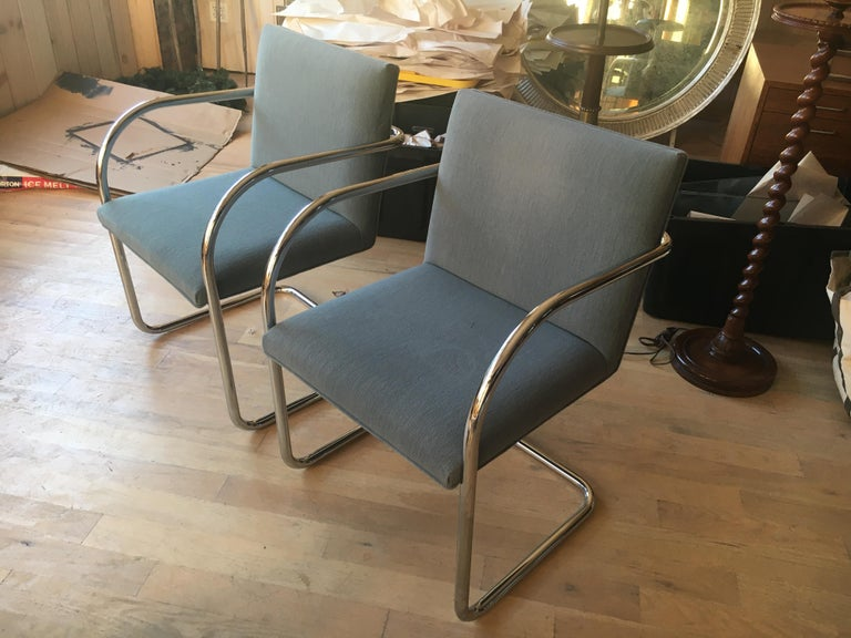 Mid-Century Modern Extensive Collection of 48 Mies Brno Style Tubular Armchairs. Office/Restaurant. For Sale