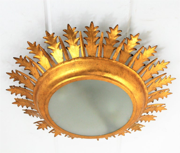 Extra large hand-hammered Mid-Century Modern gilt iron sunburst crown leafed light fixture with frosted glass difusser, Spain, 1950-1960.
