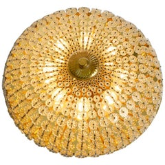 Extra Large Mid-Century Modern Floral Acrylic Glass Wall and Ceiling Lamp