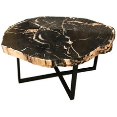 Extra Large Petrified Wood Coffee Table, Indonesia, Contemporary