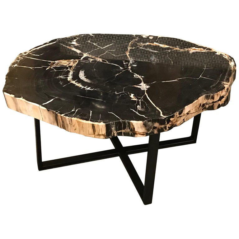 Extra Large Coffee Tables: Extra Large Petrified Wood Coffee Table, Indonesia