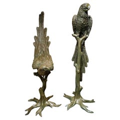 Extraordinary Bronze Pair of Male & Female Parrots on Branches, circa 1900