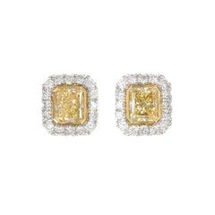Extraordinary Natural Yellow Diamond Earrings