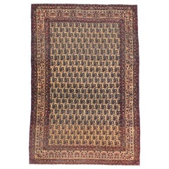 Extremly Fine Antique Lavar Kerman Persian Rug, Hand Knotted, circa 1890