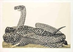 Python (from the Bestiary) - Original Lithograph by Fabrizio Clerici - 1977