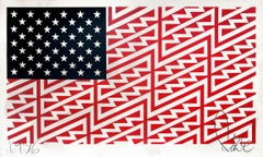 Star Spangled Shadows (Faile Flag)