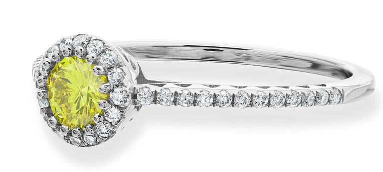 Modern Fancy Vivid Yellow 0.36ct & White Round Brilliant Cut Diamond Cluster Ring For Sale