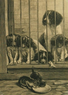 Antique Engraving Dogs and Cats Animal  1895