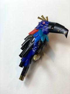 Black Beak Tucan