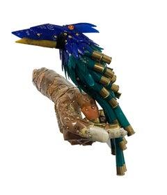 Blue and Yellow Beak