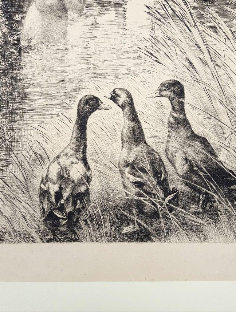 Canards Surpris (Surprised Ducks) For Sale 6