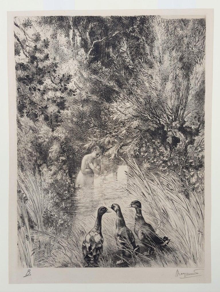 Canards Surpris (Surprised Ducks) - Impressionist Print by Félix Bracquemond