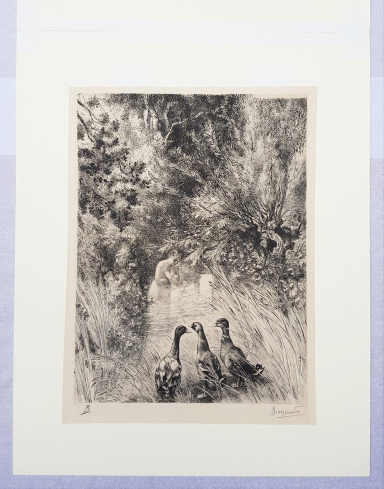 Canards Surpris (Surprised Ducks) - Gray Nude Print by Félix Bracquemond
