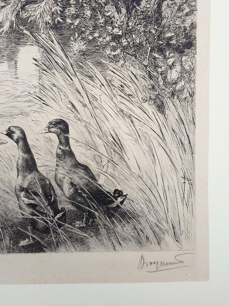 Canards Surpris (Surprised Ducks) For Sale 3