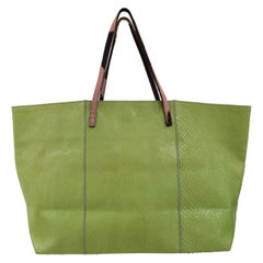 Fendi green python skin pony hair handle shoulder bag