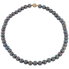 Fifty Black Akoya Pearl Necklace