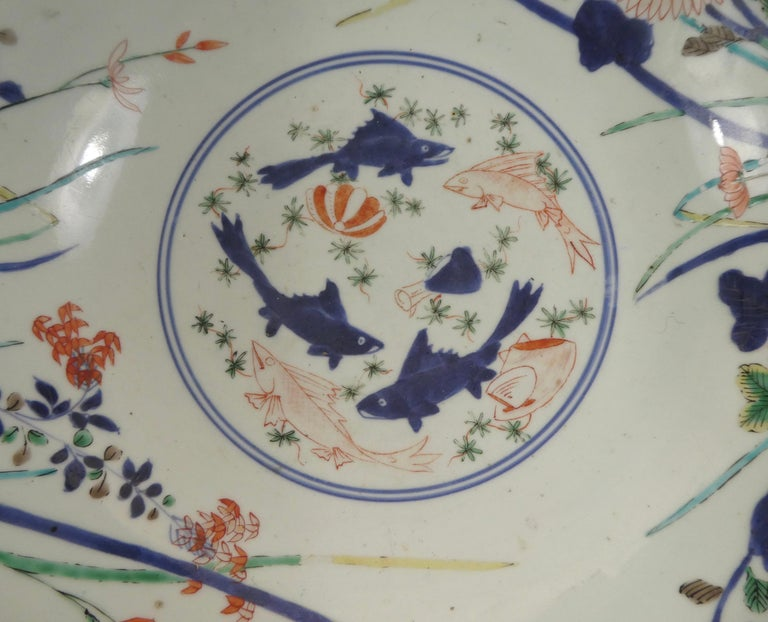 Edo Fine and Large Imari Bowl Decorated with Fish, circa 1680, Genroku Period For Sale