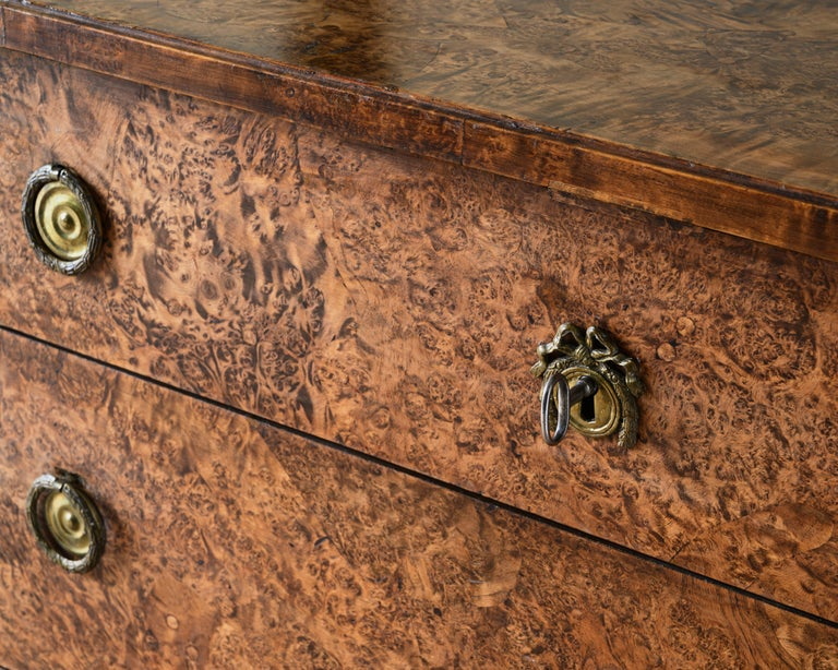 Swedish Fine Early 19th Century Gustavian Alder Root Chest of Drawers For Sale
