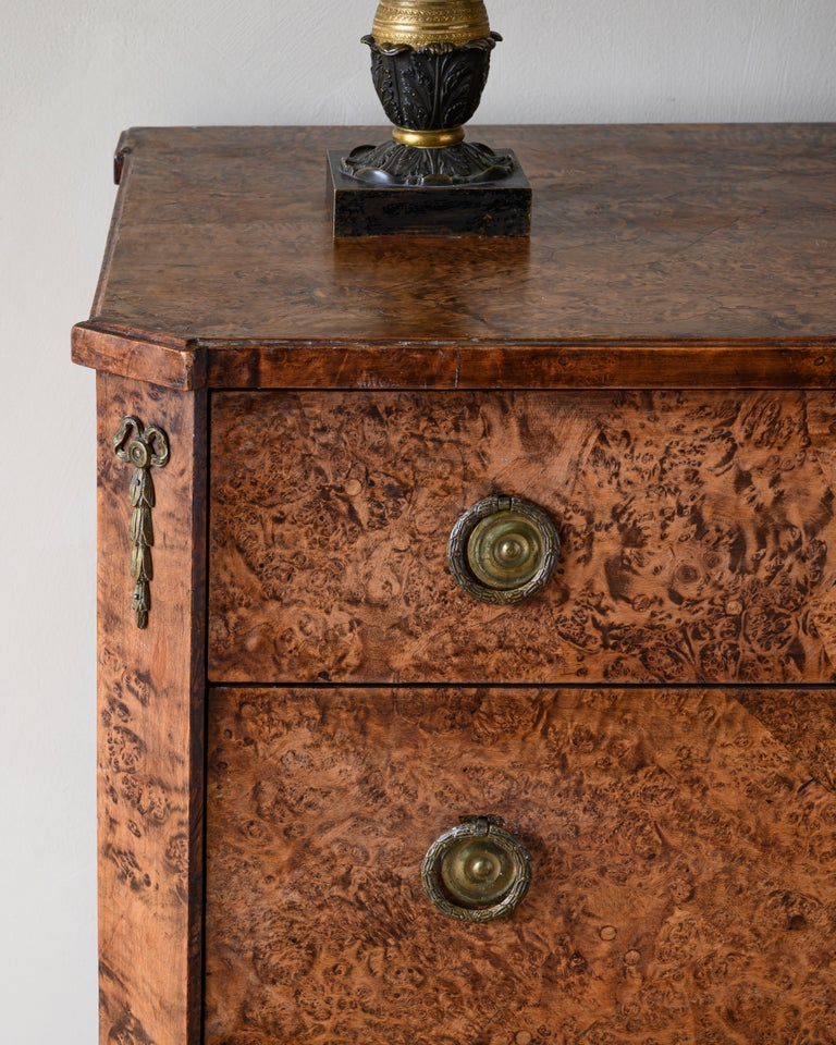Hand-Crafted Fine Early 19th Century Gustavian Alder Root Chest of Drawers For Sale