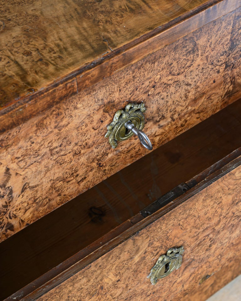 Wood Fine Early 19th Century Gustavian Alder Root Chest of Drawers For Sale