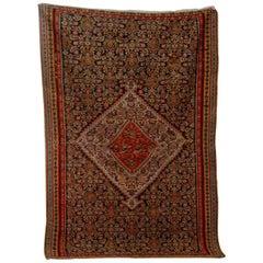 Fine Early 20th Century Senneh Kilim Rug