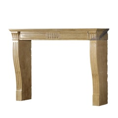 Fine French Classic Room Fireplace Surround in Bicolor Hard Limestone