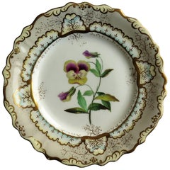 Fine Georgian porcelain plate possibly by H & R Daniel Hand Painted , circa 1830