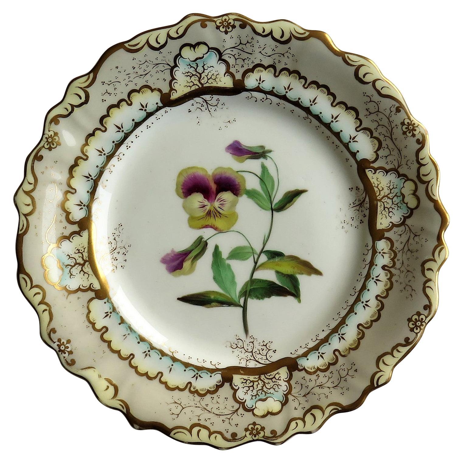 Fine Georgian Porcelain Plate by Samuel Alcock Hand Painted, circa 1835