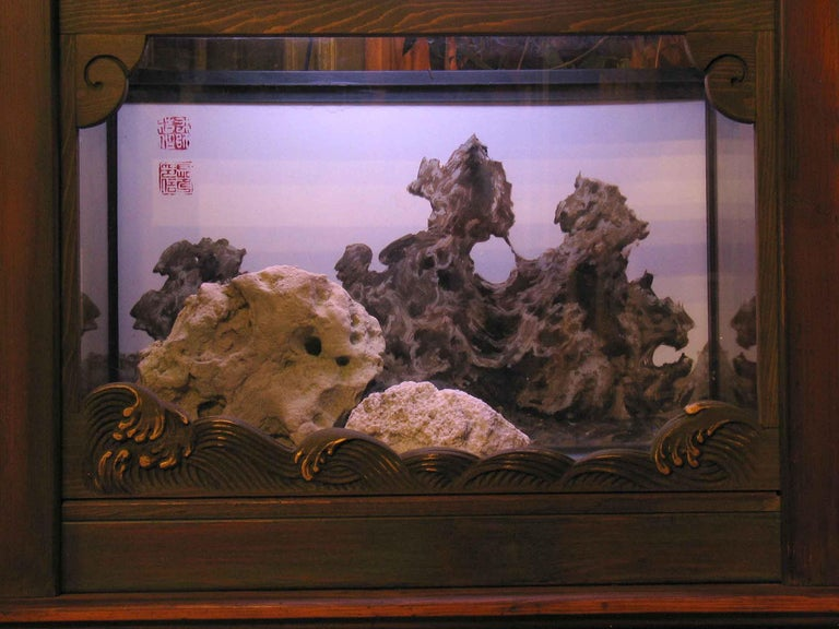 Fine Looking Chinese Style Aquarium or Terrarium, 20th Century For Sale 2