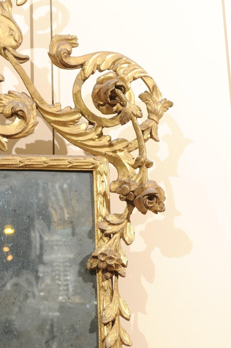 Fine Neoclassical Italian Giltwood Carved Dolphin Crest Mirror, circa 1780 For Sale 5
