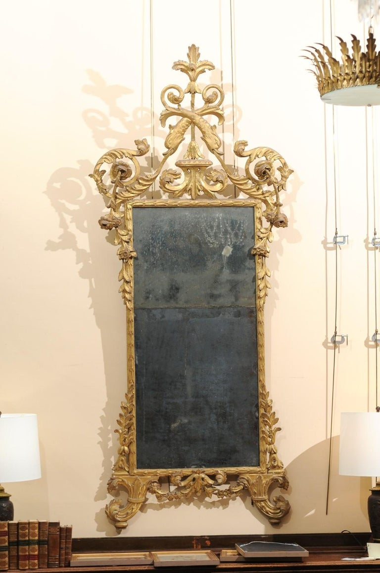 A fine late 18th century Italian neoclassical giltwood mirror with carved crest featuring dolphins, acanthus leaf and rose detail. The mirror with the original 2 piece plate.
