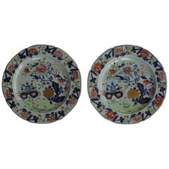 Fine Pair of Georgian Mason's Dinner Plates in Small Vase, Flowers and Rocks Ptn