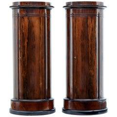 Fine Pair of Mid-19th Century Palisander Pedestal Cabinets