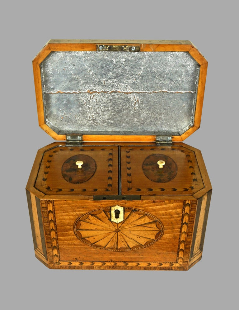 A fine quality Georgian heavily inlaid satinwood octagonal tea caddy, the top with a conch shell and fan design, the front with a shell inlay, the corners decorated with boxwood columns, the sides further inlaid with oval burled panels all with