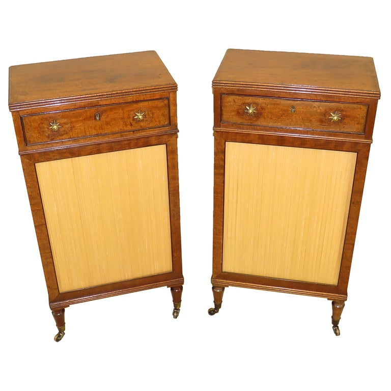 Fine Regency English 19th Century Mahogany Pair of Side Cabinets