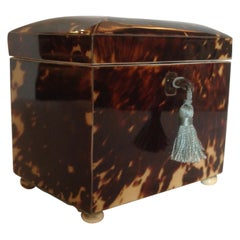 Fine Regency Tea Caddy
