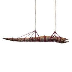 Fine Taxidermy 5 Meter Nile Crocodile by Sinke & Van Tongeren