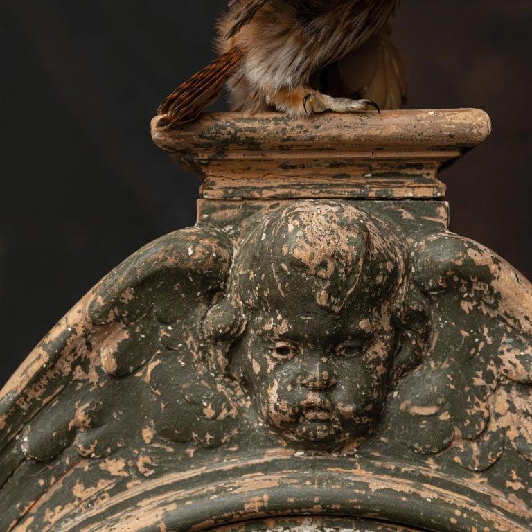 Fine Taxidermy Tower of Owls by Sinke & Van Tongeren For Sale 5