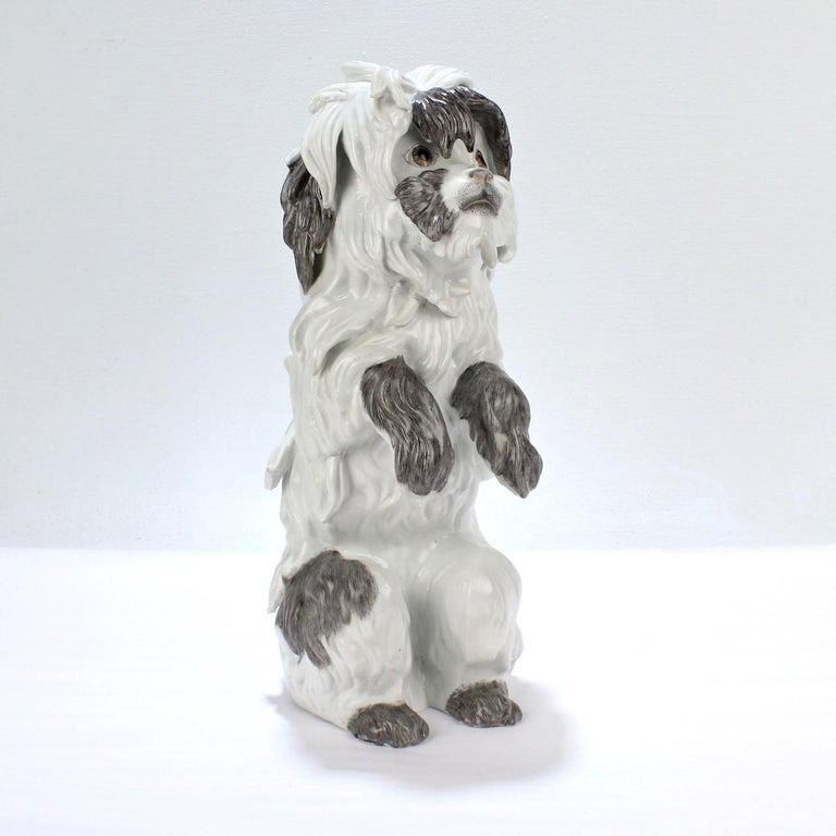A fine Samson porcelain model of a Bolognese dog.  Modeled after the figurines that Kaendler designed for Meissen in 18th century.  A classic form that is always in style!  The reverse has a blue underglaze factory mark for Samson & Cie