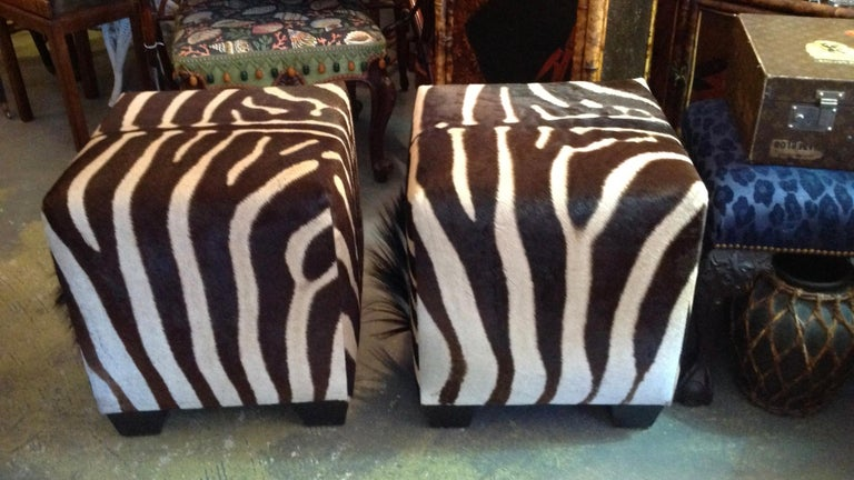Fine Zebra Ottomans For Sale 4