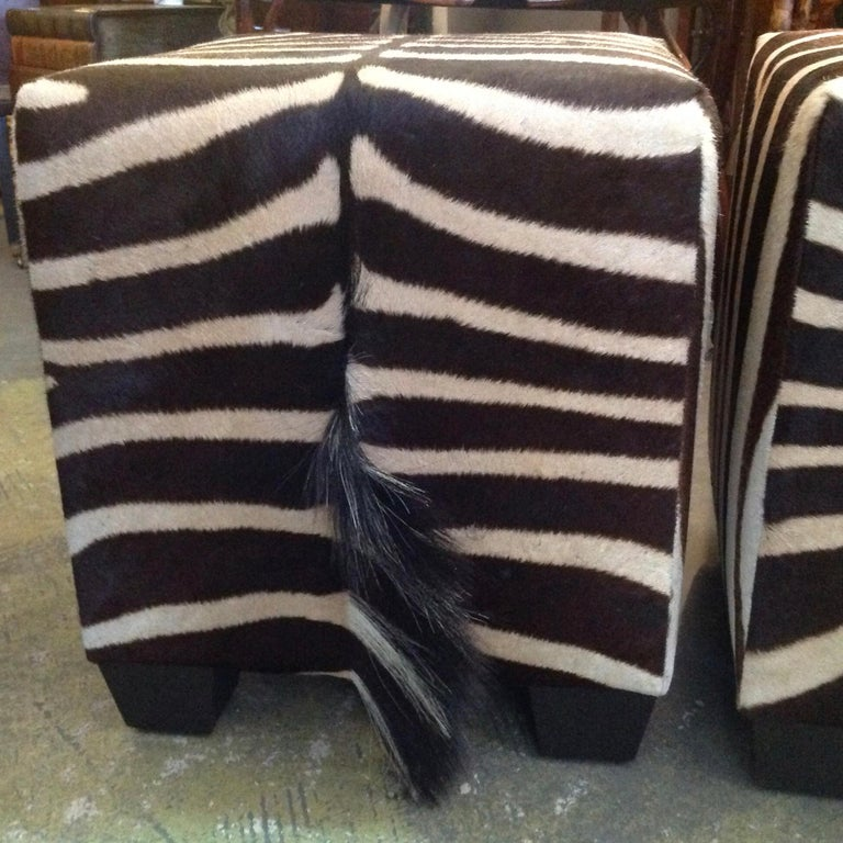 Fine Zebra Ottomans For Sale 9