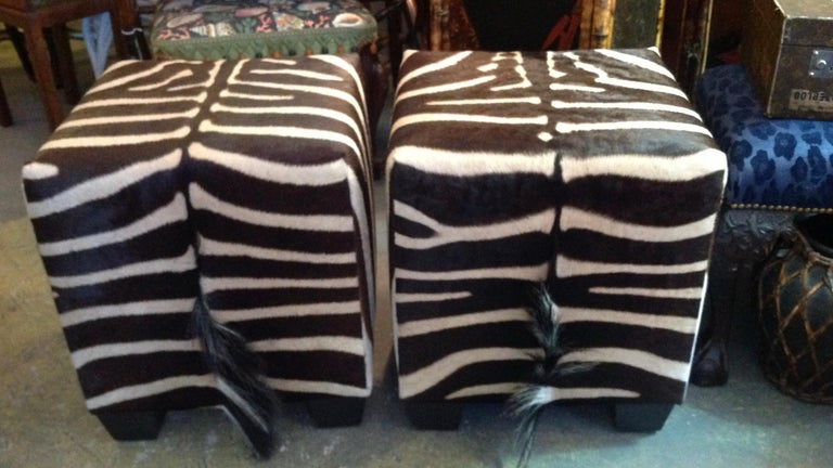 20th Century Fine Zebra Ottomans For Sale