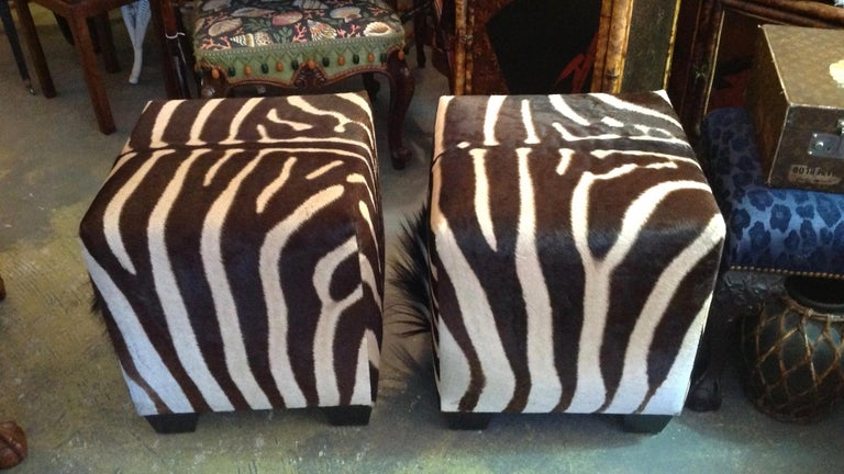 Fine Zebra Ottomans For Sale 2