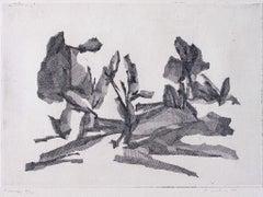 Landscape - Original Etching by Fiorella Diamantini - 1960s