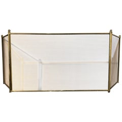 Fire Screen or Fireplace Screen