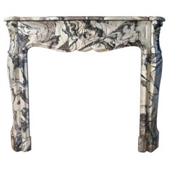 Fireplace in Expressive Marble