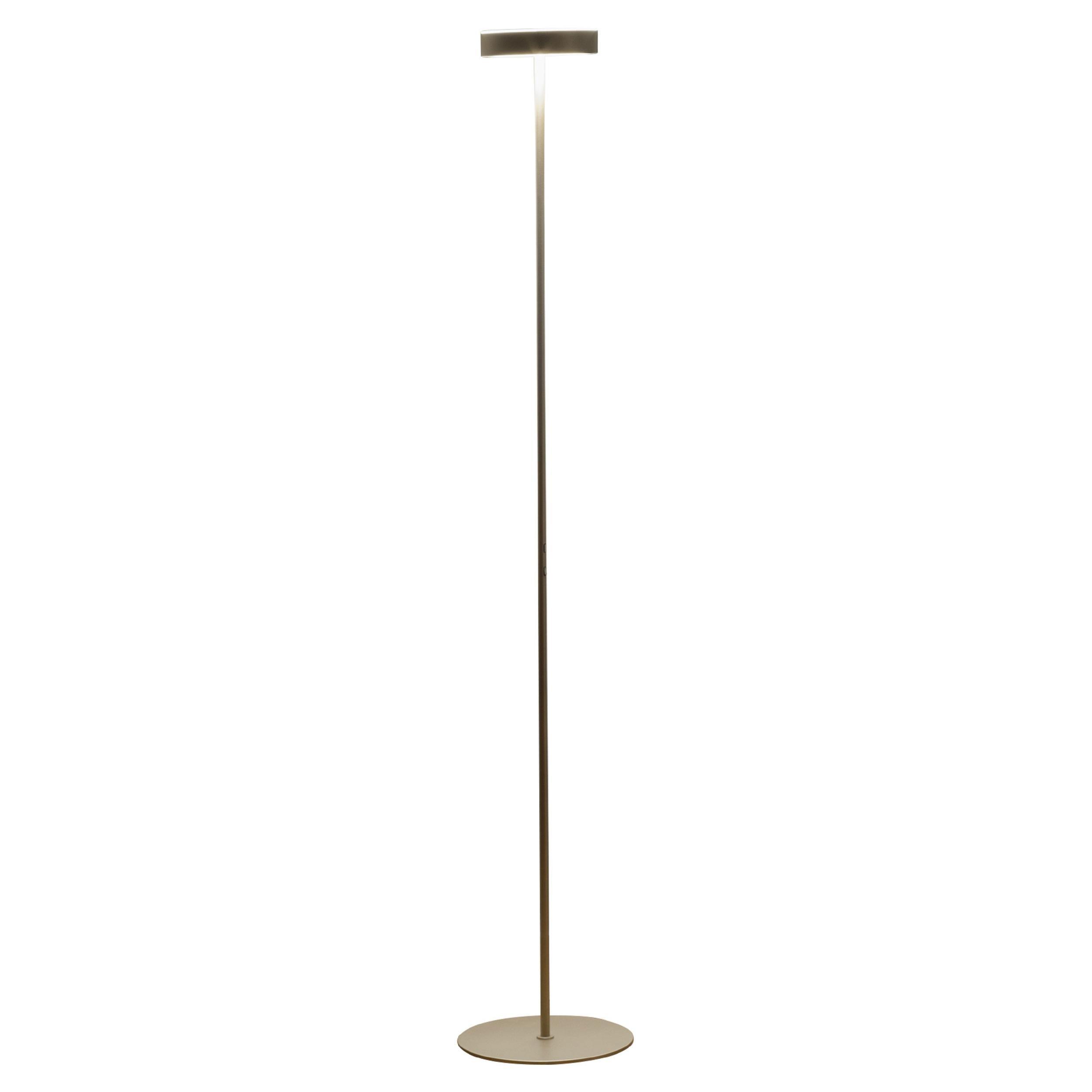Firmamento Milano Tambu LED Floor Lamp in Gold by Carlo Guglielmi