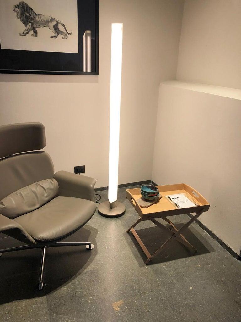 Steel Firmamento Milano White Presbitero Floor Lamp by Pierluigi Cerri For Sale